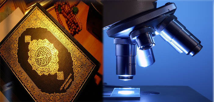 quran and science Dr maurice bucaille is an eminent french surgeon, scientist, scholar and author of ''the bible, the quran and science'' which contains the result of his.